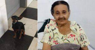 Itambé: Caozinho faz plantão na porta de hospital por idosa doente