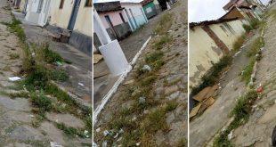 Mato toma conta de ruas em Itambé