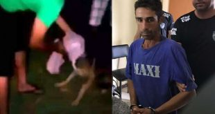 Crueldade: Lavrador é preso após arrancar testículos de dois cães com estilete