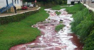 Rio vermelho: Caminhão tomba e despeja 10 mil litros de sangue de gado em rio de Goiás
